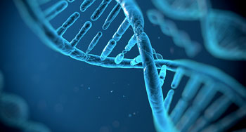 DNA testing and adoption